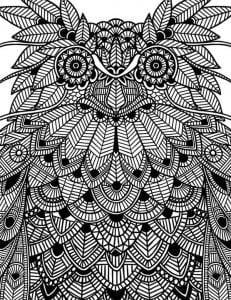сова раскраска (89)