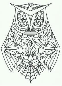 сова раскраска (92)