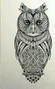 сова раскраска (93)