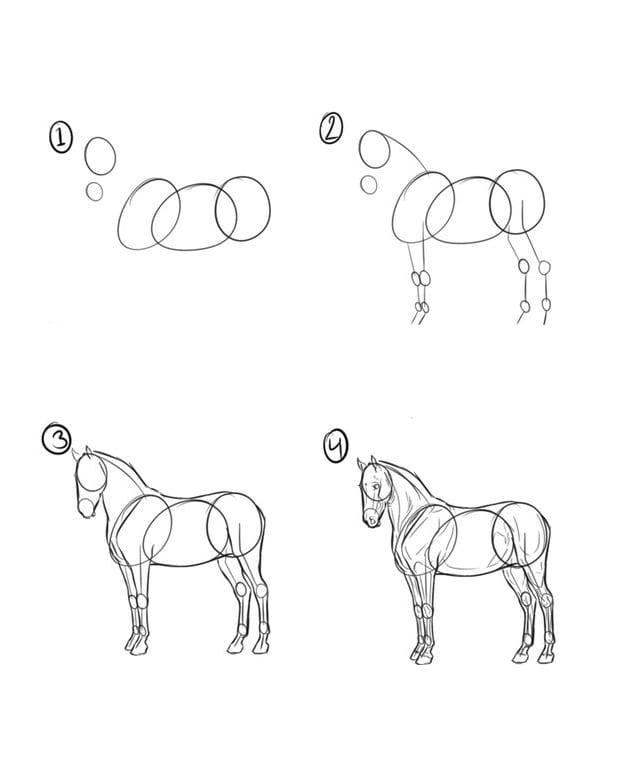 Лошадь рисунок карандашом поэтапно
