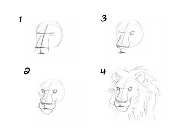 Морда льва поэтапно