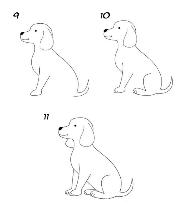 Собака рисунок карандашом поэтапно