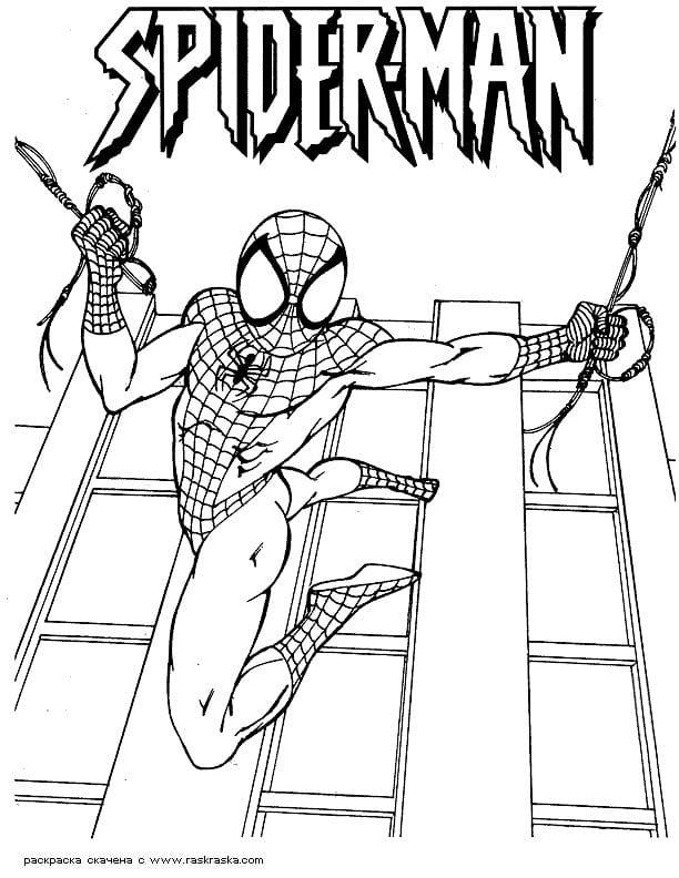 раскраска человек паук для мальчиков 3 года - Рисовака