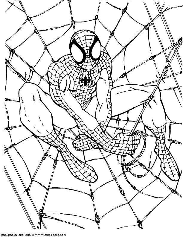 раскраска человек паук распечатать - Рисовака