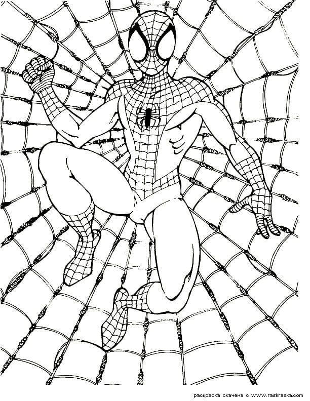 раскраски для мальчиков бесплатно человек паук - Рисовака