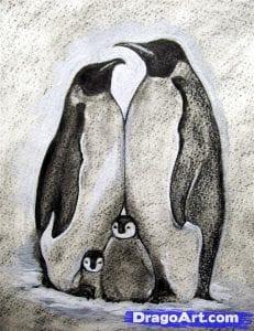 Как нарисовать пингвина карандашом поэтапно