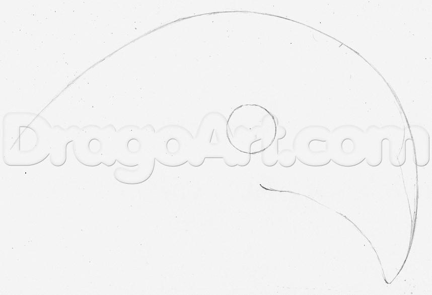 1-11 Как нарисовать ястреба