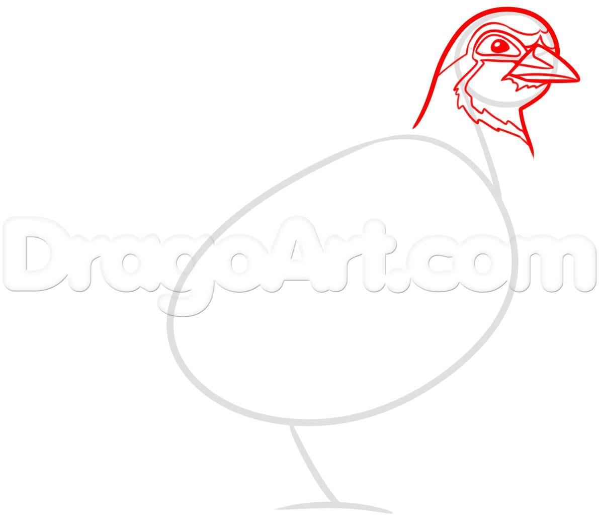 Как нарисовать куропатку