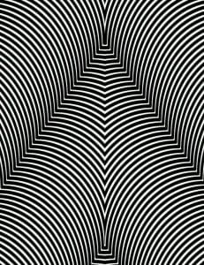 иллюзии оптические черно-белые