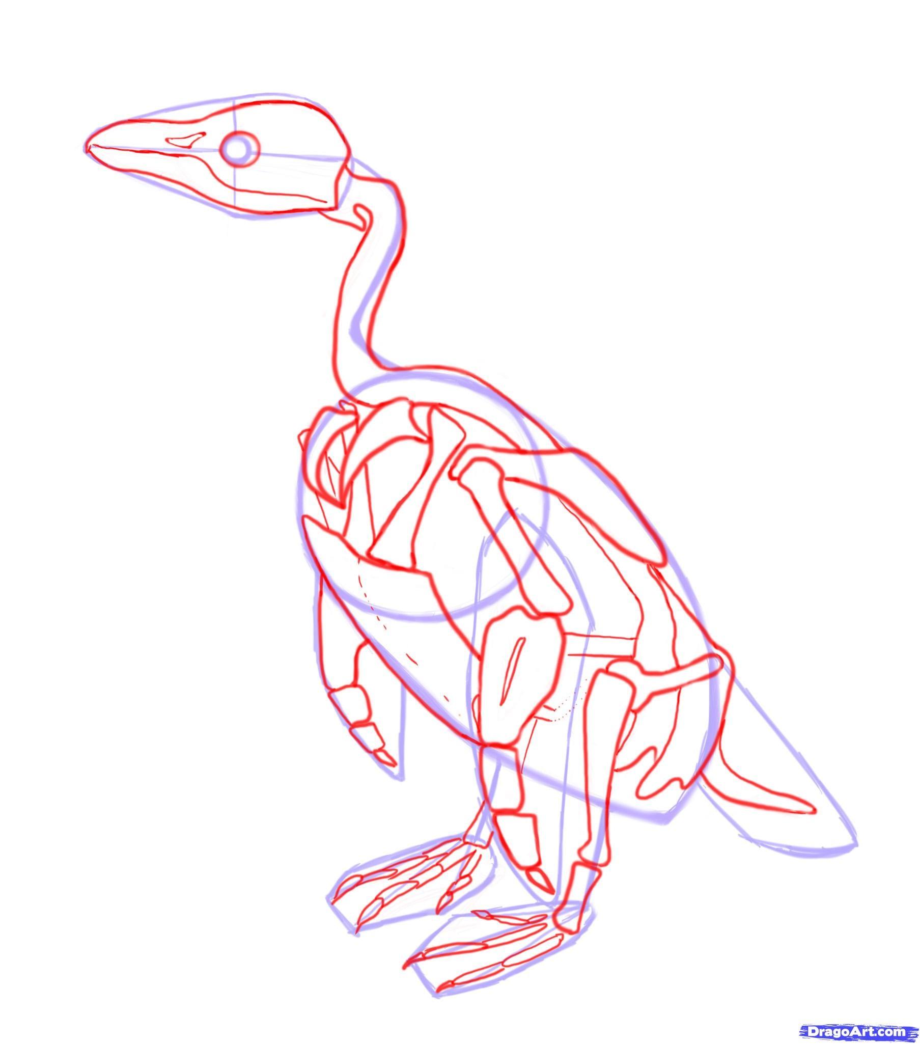 4-2 Как нарисовать пингвина карандашом