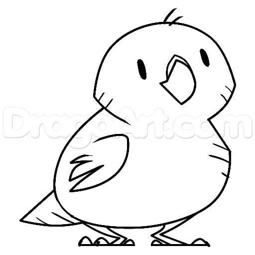 Как нарисовать попугая какапо поэтапно