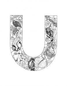 anglijskij-alfavit-plakat-kartochki-raskraski-232x300 Английский алфавит