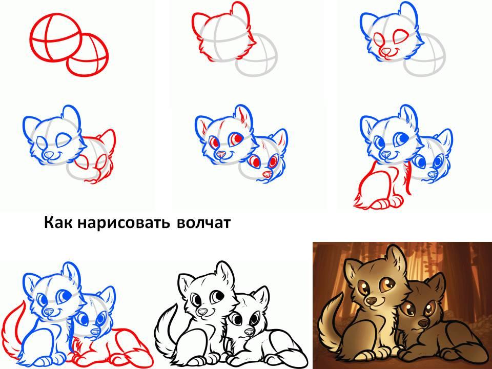 Как нарисовать волчат