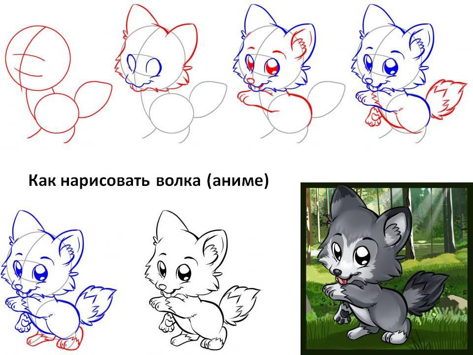 Как нарисовать волка аниме