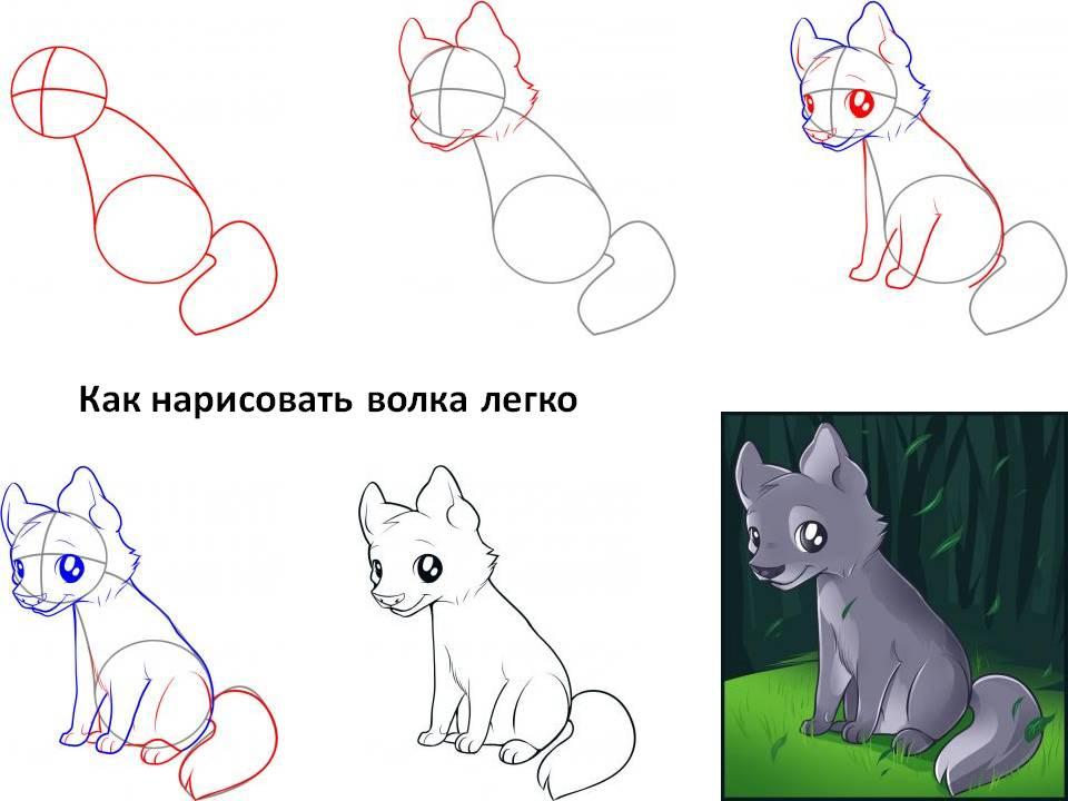 Как нарисовать волка поэтапно полегче