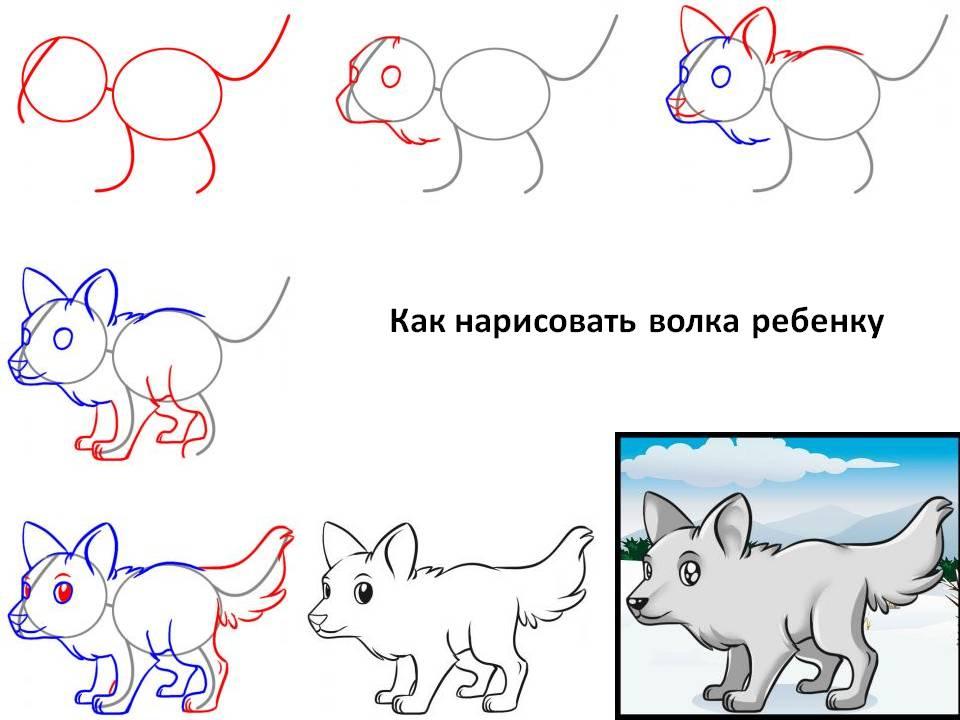 Как нарисовать волка ребенку