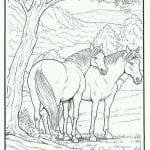 лошади картинки красивые раскраски