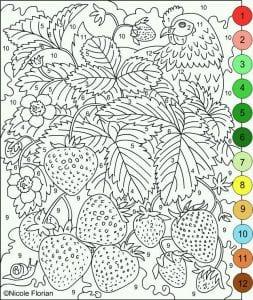 po-nomeram-dlja-vzroslyh-raskraska-253x300 Раскраски по номерам взрослые