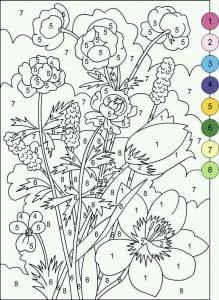 po-nomeram-gotovye-raskraski-219x300 Раскраски по номерам взрослые