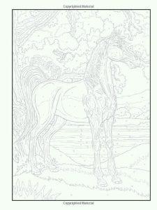 po-nomeram-raskraski-zhivopis-225x300 Раскраски по номерам взрослые