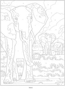 pod-nomerami-risunki-222x300 Раскраски по номерам взрослые