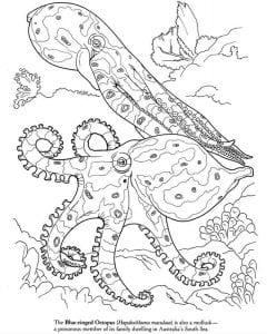 подводный мир раскраски (104)