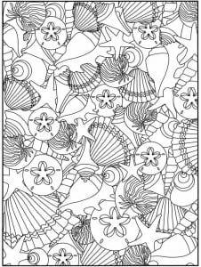 подводный мир раскраски (107)