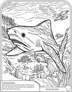 подводный мир раскраски (11)