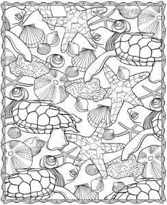 подводный мир раскраски (111)