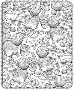 подводный мир раскраски (112)
