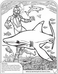 подводный мир раскраски (14)