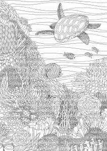 подводный мир раскраски (18)