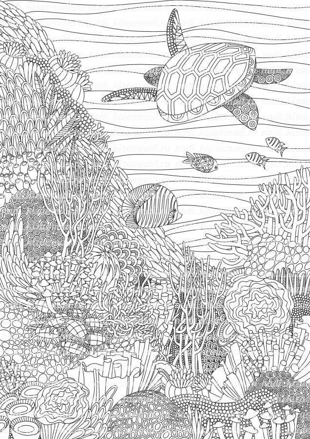 -мир-раскраски-18 подводный мир раскраски (18)