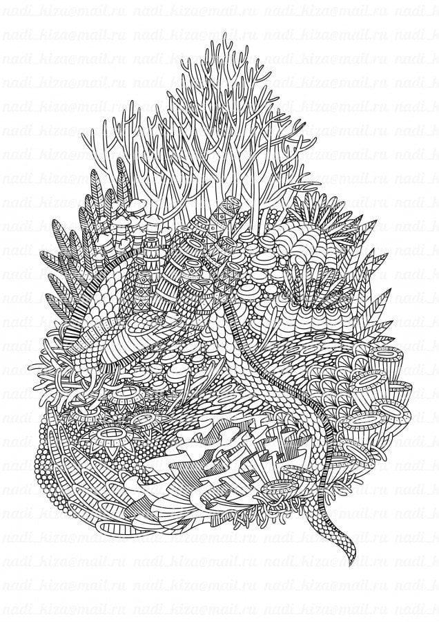 подводный мир раскраски (21)