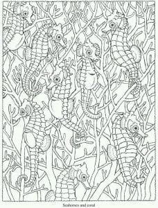 подводный мир раскраски (47)