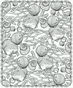 подводный мир раскраски (48)