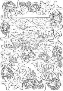 подводный мир раскраски (5)