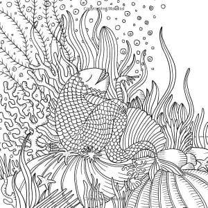подводный мир раскраски (54)