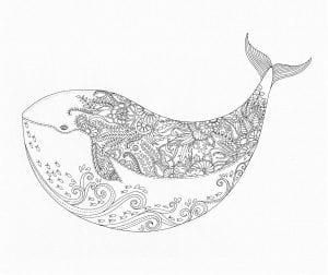 подводный мир раскраски (72)