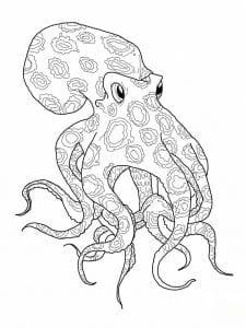 подводный мир раскраски (86)