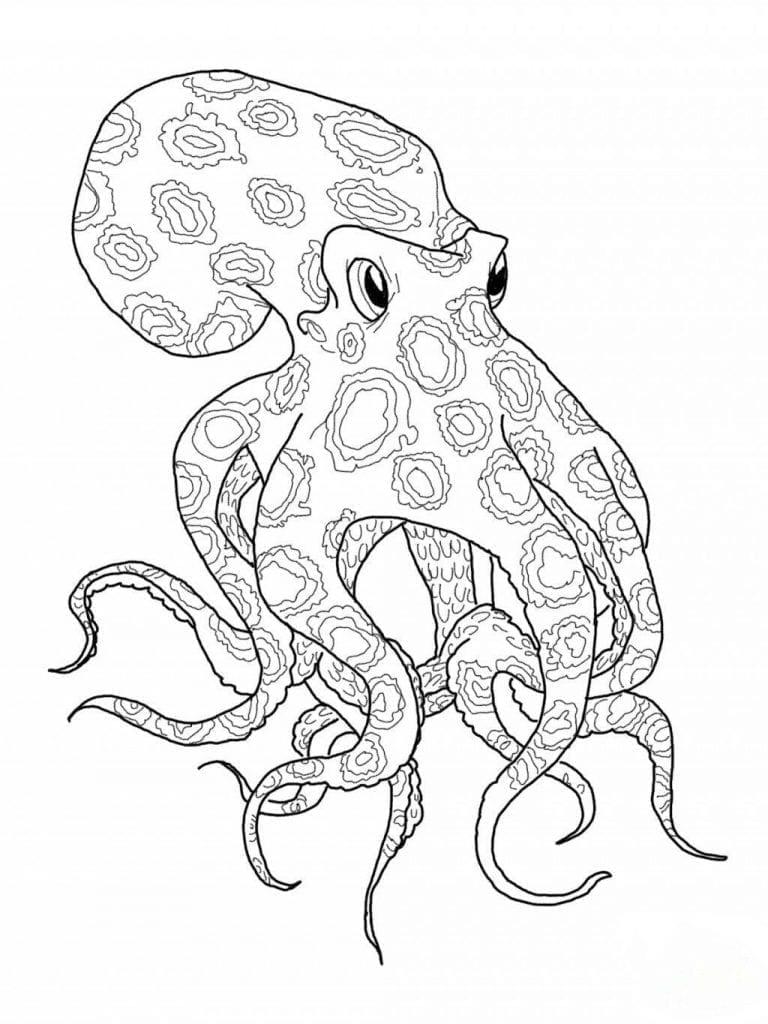 -мир-раскраски-86-768x1024 подводный мир раскраски (86)