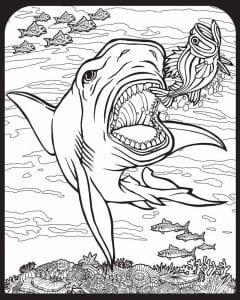подводный мир раскраски (94)