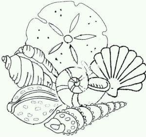 подводный мир раскраски (98)