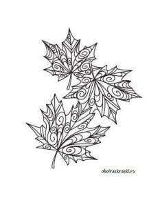раскраски листья и деревья (1)