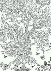 раскраски листья и деревья (11)