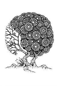 раскраски листья и деревья (13)