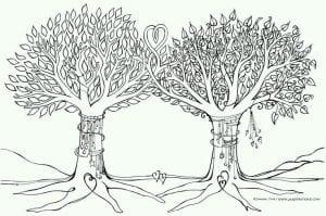 раскраски листья и деревья (19)