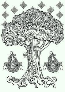 раскраски листья и деревья (27)