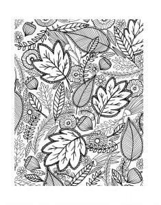 раскраски листья и деревья (3)