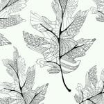 раскраски листья и деревья (33)